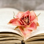 Happy Sant Jordi: Books on my Lit List