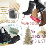 My Christmas Wishlist – or – Why I'm going apeshit over the holidays this year